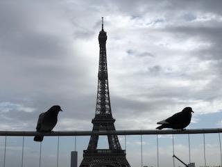 Парижские заметки с пражскими вкраплениями
