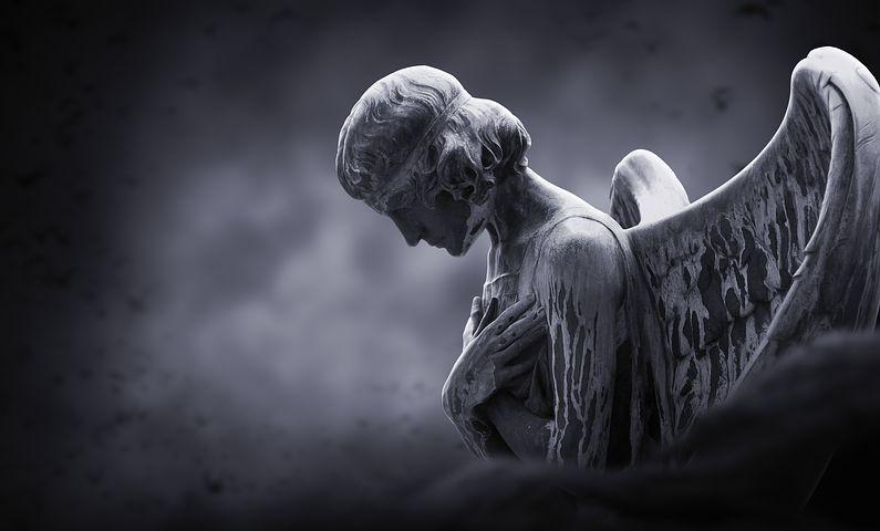 Время ангелов и время собак
