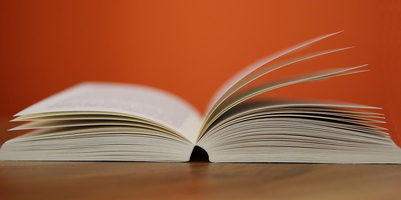 Хорошая книга – это эмоции